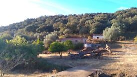 12 Acres of Beautiful Tranquil Land with Cottage & buildings in South Spain BARGAIN AT £37,000!!!