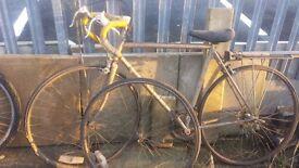Peugeot Sports Bike Pure Gold