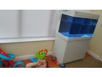 Red sea max 250 fish tank