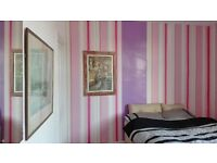 Double room to let Strood short or long stay, pet cats in the home. heated room free wifi