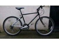 Raleigh Activator 2 in amazing condition great bike like new Mountain bike