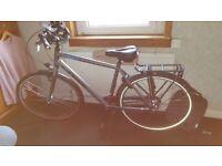 Trek L100 x large bike