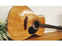 Freshman Open Plains FOP10N Boutique Acoustic Guitar