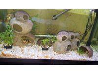 Aquarium 160 ltre