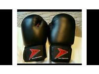 NEW KMA Leather Boxing Gloves 10oz