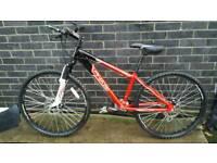 BOYS Mountain Bike Excellent Condition