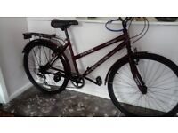 Ladies Bicycle (new)