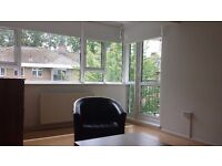 3 bedroom flat to rent in Southfields. Short-term