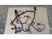 Yamaha XJ 600 S Diversion complete wiring loom taken off a 98 model