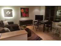 BEAUTIFUL BRIGHT ONE BEDROOM FLAT - MARBLE ARCH- CLOSE TO HYDE PARK- MOVE IN NOW!