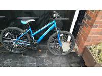 Apollo xc26 men's down hill mountain bike