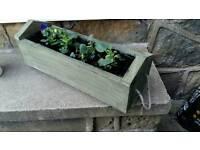 Handmade planters Inc plants