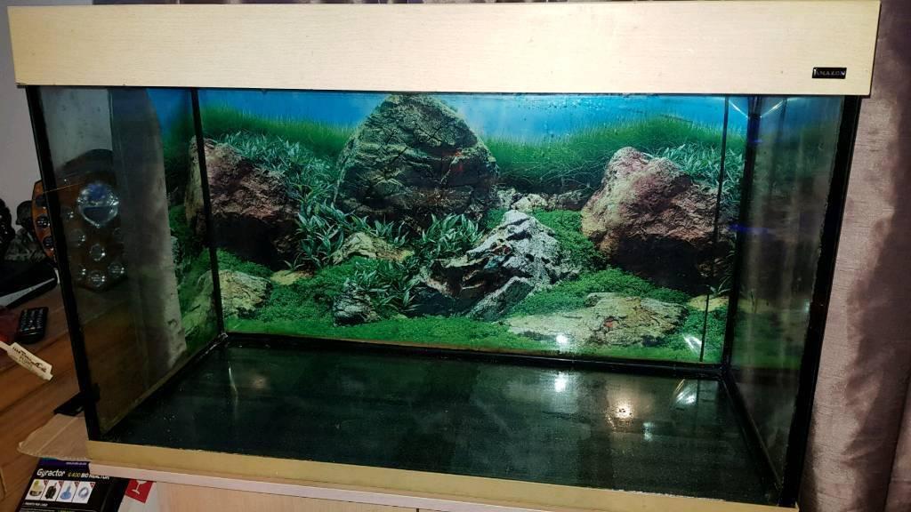 3ft fish tank 240ltr aquarium | in Barnet, London | Gumtree