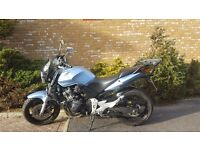 2006 Honda CBF 600 For Sale