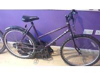 Ladies Raleigh Nexos Bike