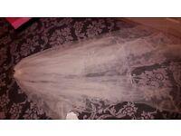 Veil and bridal headpiece