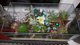 Terrarium with cacti and succulents and Christmas decorations