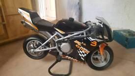 Blata Elite 4.2 mini moto bike