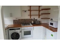 The studio flat availible now