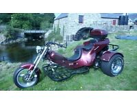 Snaketrikes 1600 cc trike with VW engine with trailer