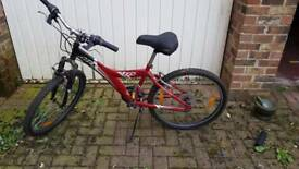 Children's giant mountain bike 225
