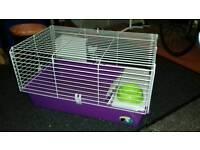 Large guinea pig hutch
