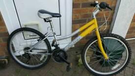 Probike child's bike used