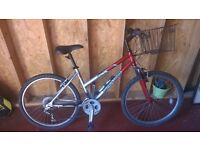 Ladies mountain bike, little used and good condition