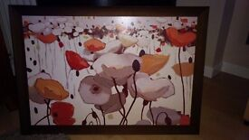 Poppies print with dark brown frame