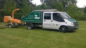 Ford Transit tipper arborist truck for tree surgeons