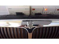 jaguar x type front grille