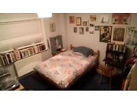 Large Double Room Excellent location split level 2 Bed Flat