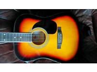 Acoustic Rio 🎸 guitar