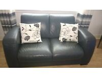 natuzzi 2 seater and dfs swivel chair