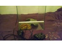 Snake tank
