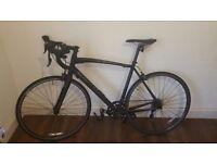 Large Specialized Mens Racing Bike Sports Bike Commuter Bike - not trek, carrera, giant