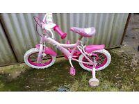 Girls Pink Princess Bike Can Deliver
