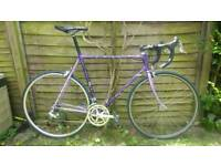Superb Titanium Raleigh Dynatech with Campagnolo Veloce 9x2