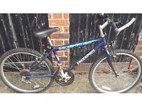 youth/teen bike- ORPINGTON KENT - £10