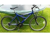 Gents Blue Mountain Bike