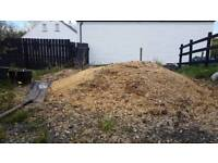 Free Manure and Shavings
