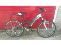 Giant MTX250 Childs Bike