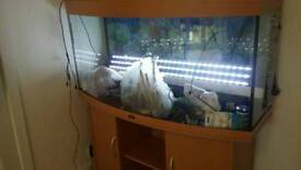 Juwel 4ft Bow fronted aquarium excellent condition.
