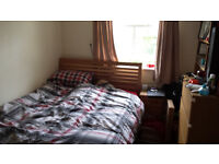 Double room in lovely flat just off Gloucester Road