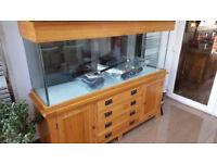 Aqua oak 180 marine tropical cold water fish tank Solid oak aquarium 6 ft