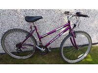 "Ladies Mountain Bike 18"" Frame 15-Speed"
