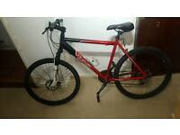 Mens mountain bike free delivery