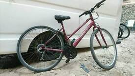 Ladies town bike fully serviced