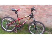 Raleigh Hot Rod Boy's Bike