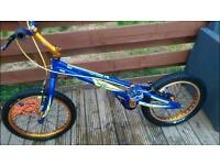 Onza ska trials bike